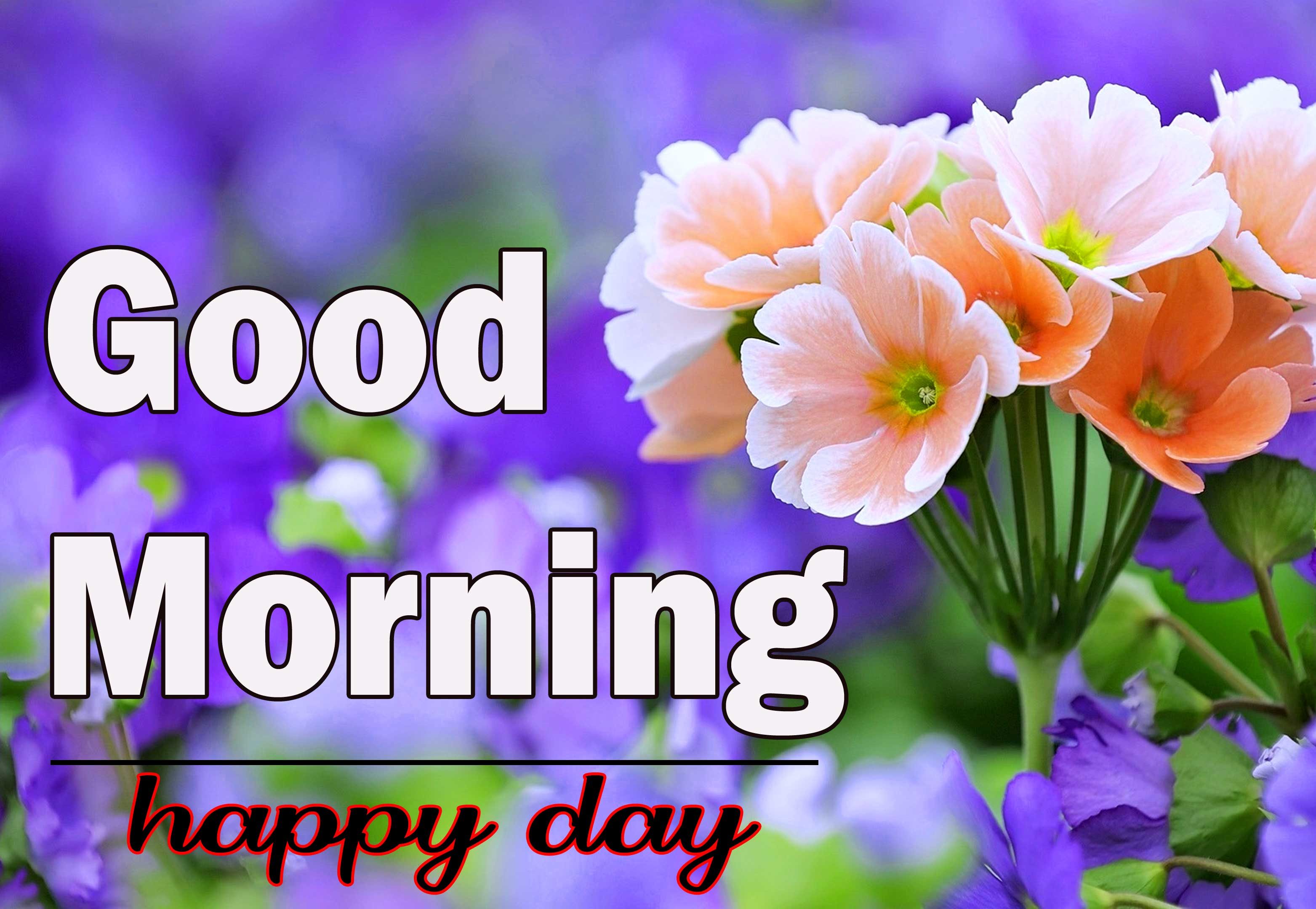With Flower 1080p Flower Good Morning Images Download
