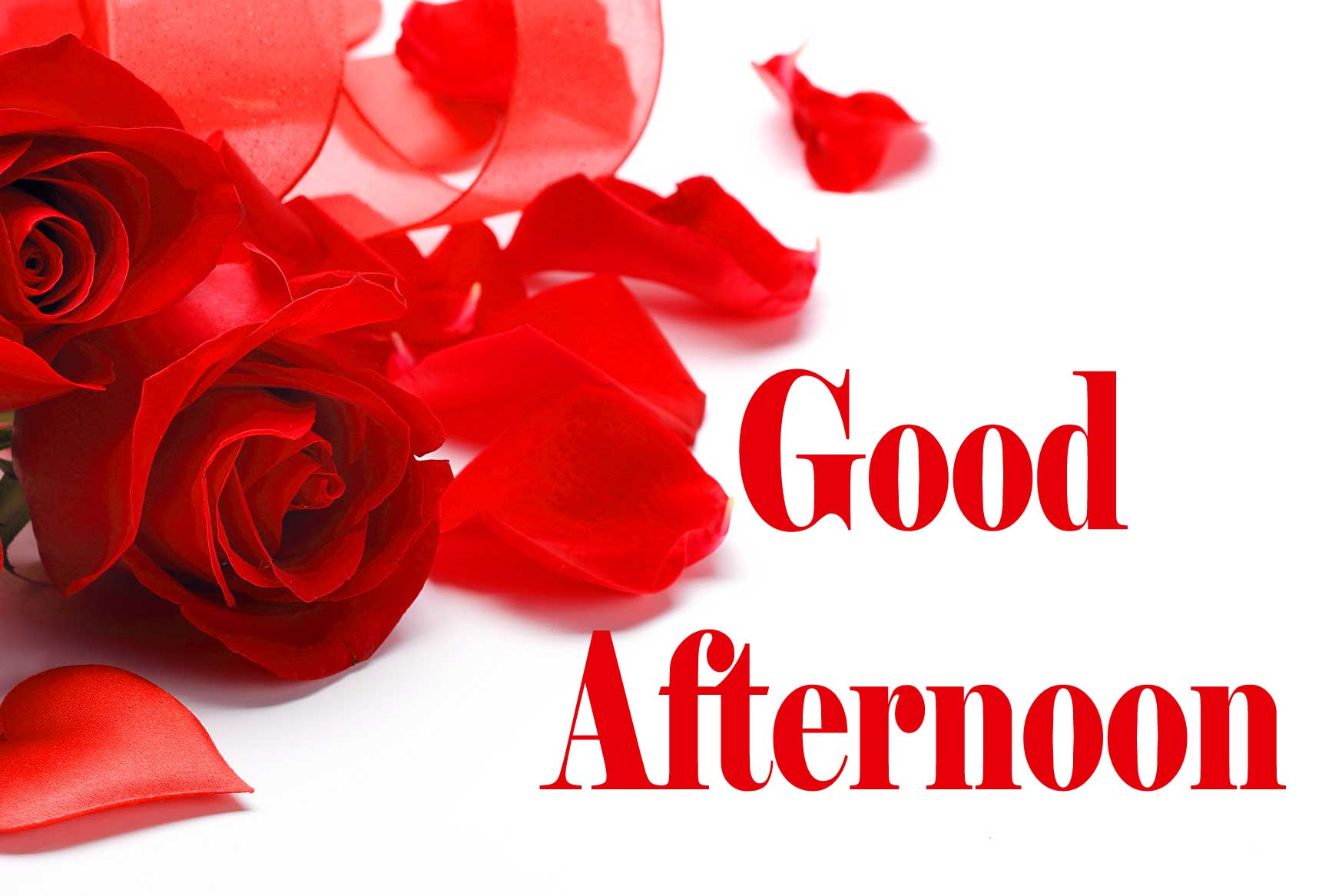 Good Afternoon 7