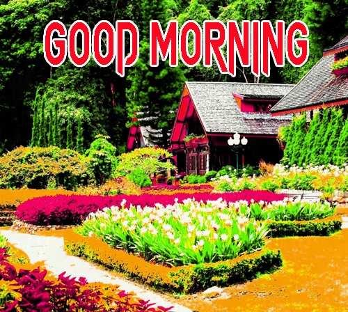 Good Morning Images 1080p Download 10