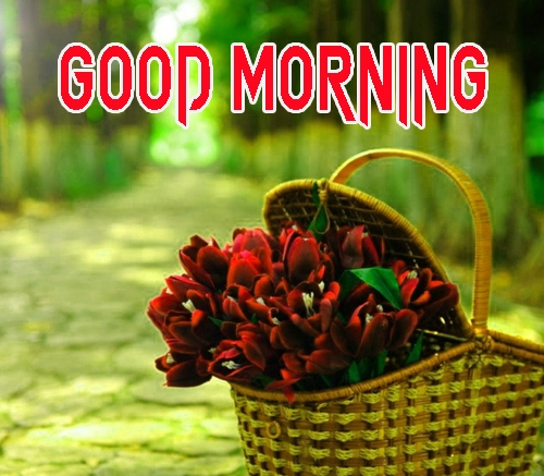 Good Morning Images 1080p Download 17