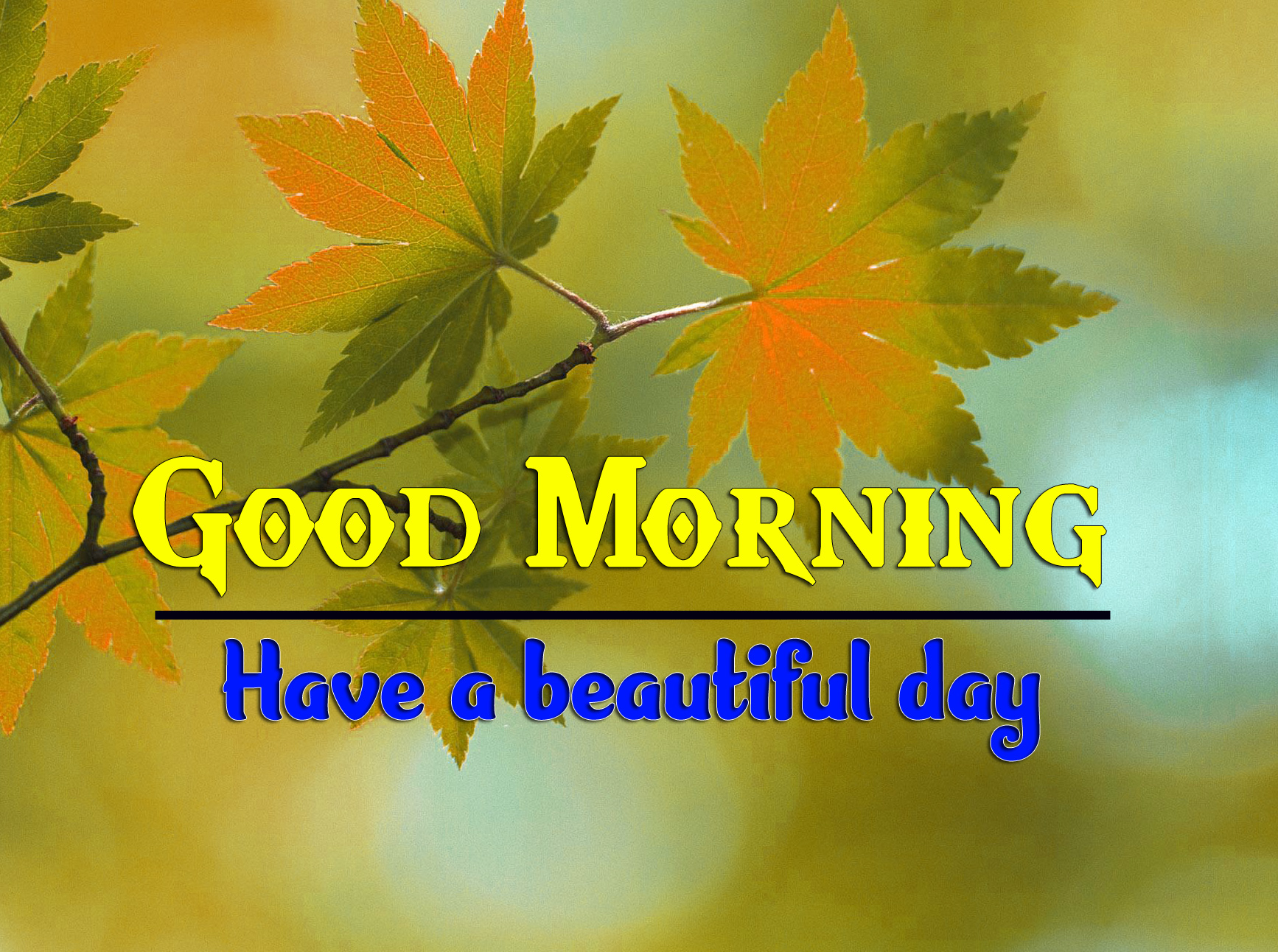 Good Morning Images 1080p Download 4 1