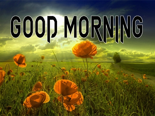 Good Morning Images 1080p Download 4