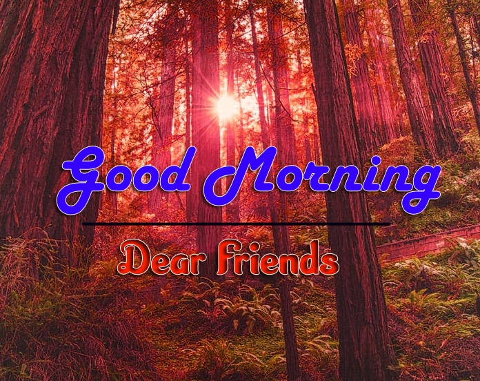 Good Morning Images 1080p Download 5 1