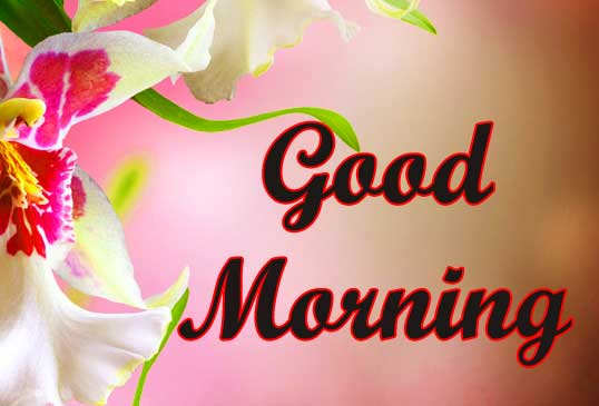 Good Morning Wallpaper Pics For Lover Download 19