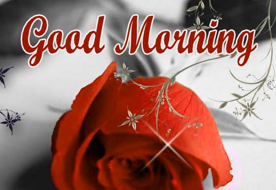 Good Morning Wallpaper Pics For Lover Download 20