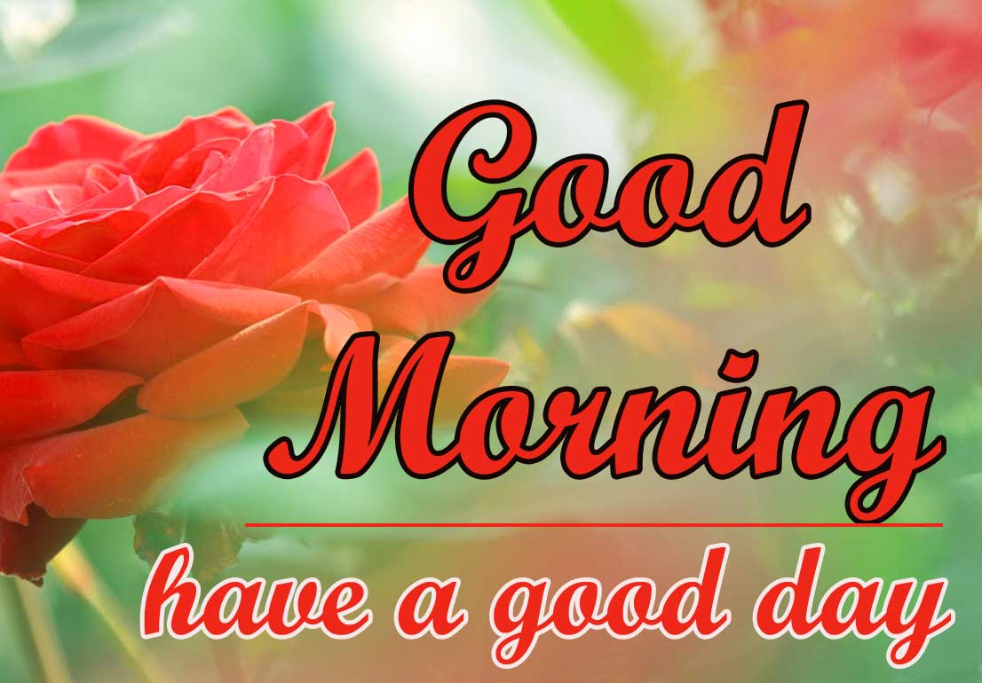 Good Morning Wallpaper Pics For Lover Download 8