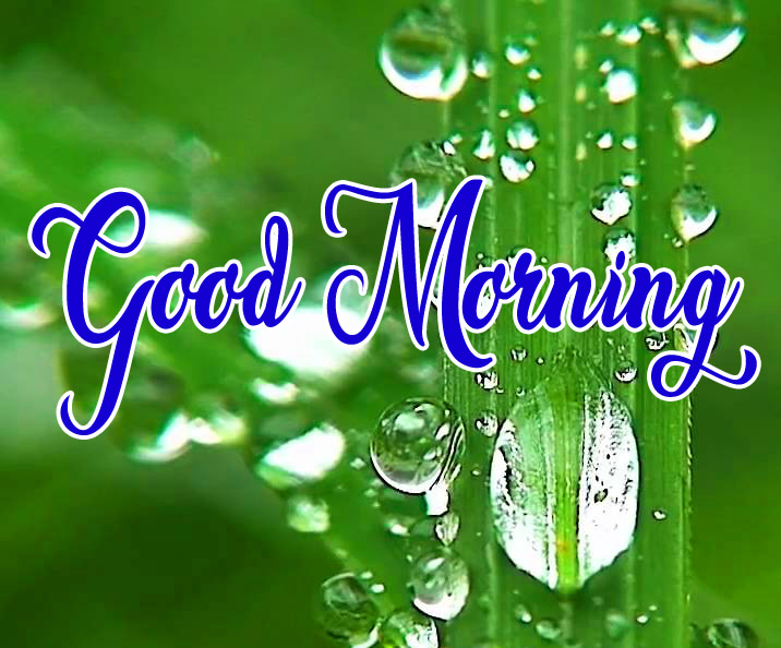 High Quality Good Morning Pics Download 11