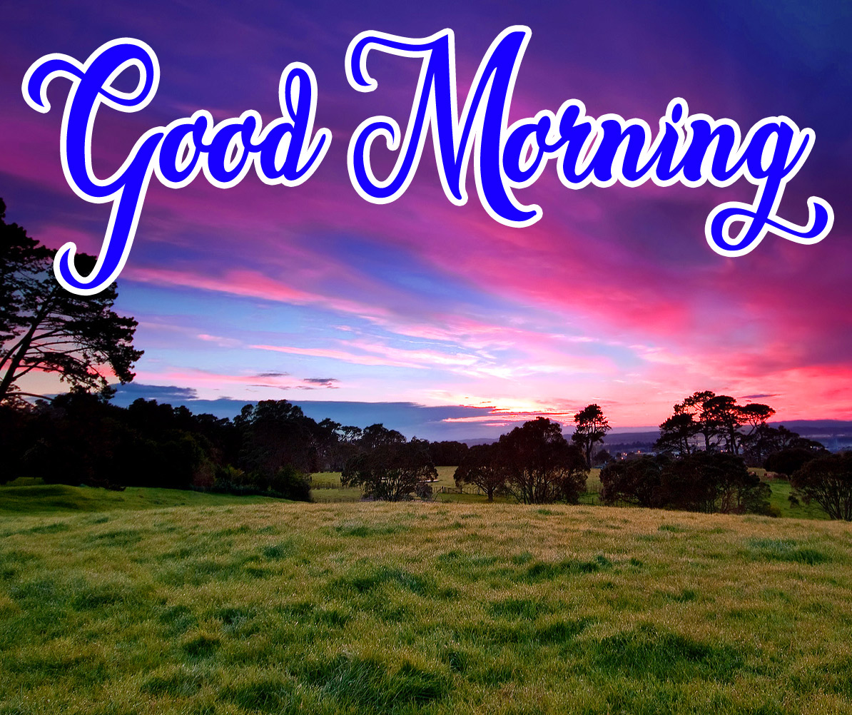 High Quality Good Morning Pics Download 18