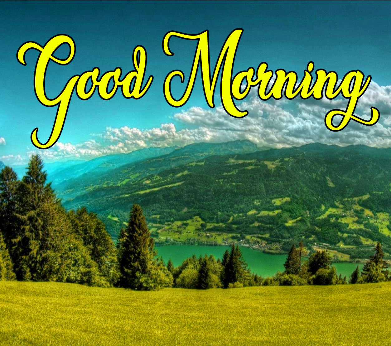 High Quality Good Morning Pics Download 7