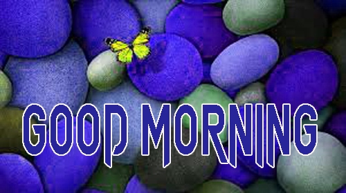 Latest Good Morning Images Pics New Download