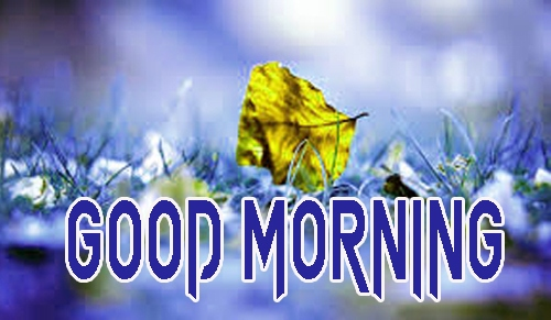 Latest Good Morning Images Pics Download Free
