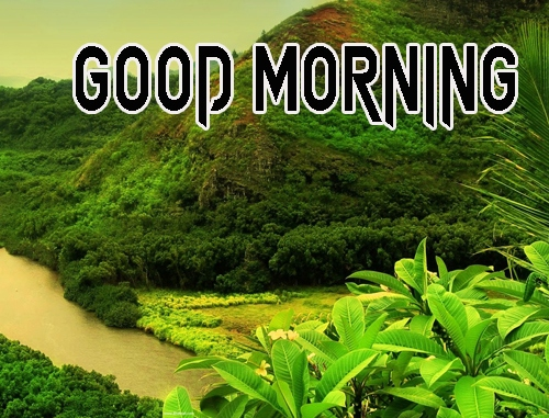 Best 1080p Latest Good Morning Images Pics Download