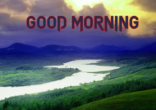 Free Latest Good Morning Images Pics Download