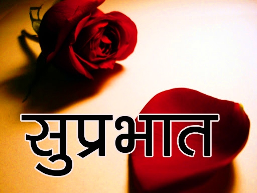 Red Rose Suprabhat Images 12