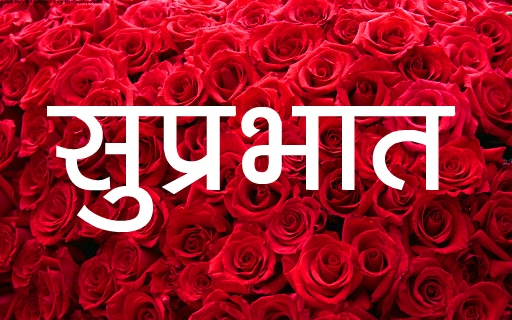 Red Rose Suprabhat Images 14