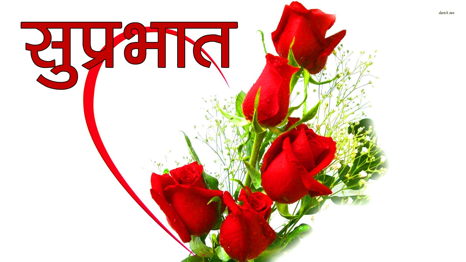Red Rose Suprabhat Images 15 1