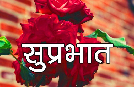 Red Rose Suprabhat Images 2 1