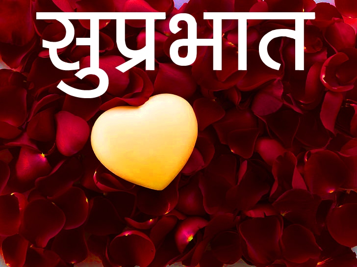 Red Rose Suprabhat Images 2 2