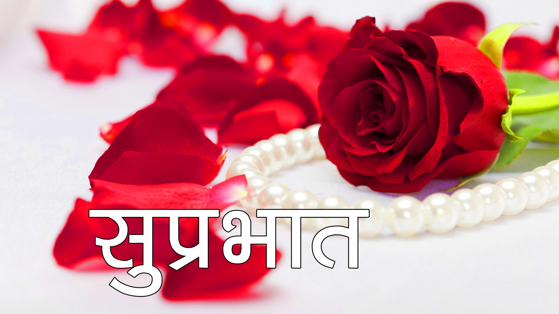 Red Rose Suprabhat Images 20