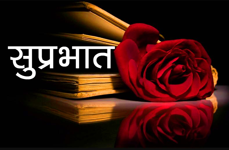 Red Rose Suprabhat Images 5