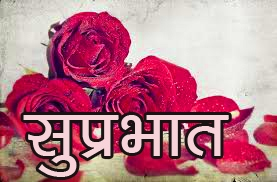 Red Rose Suprabhat Images 7 1