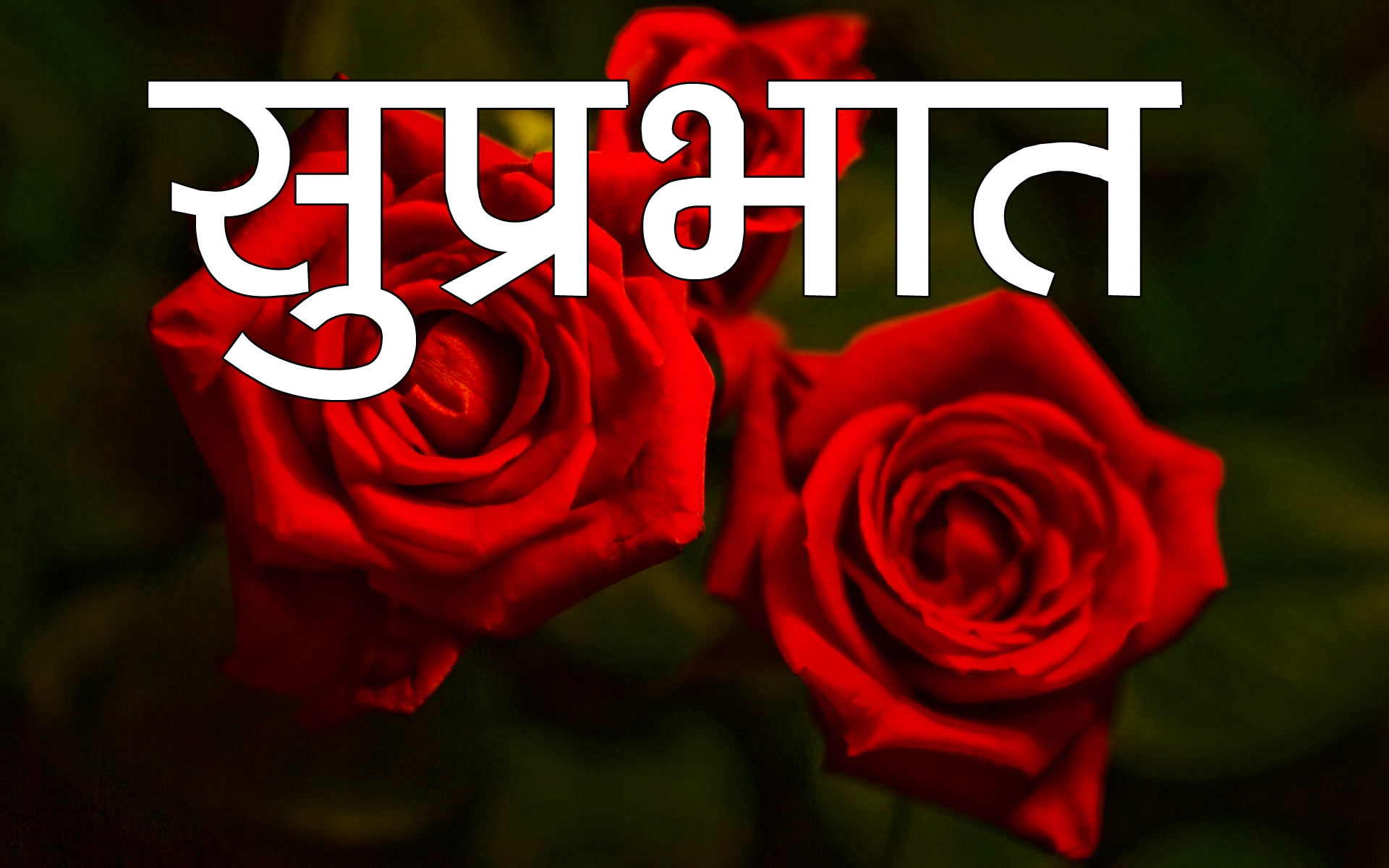 Suprabhat Images 6