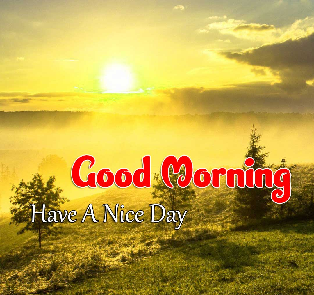 Beautiful Good Morning Download Images