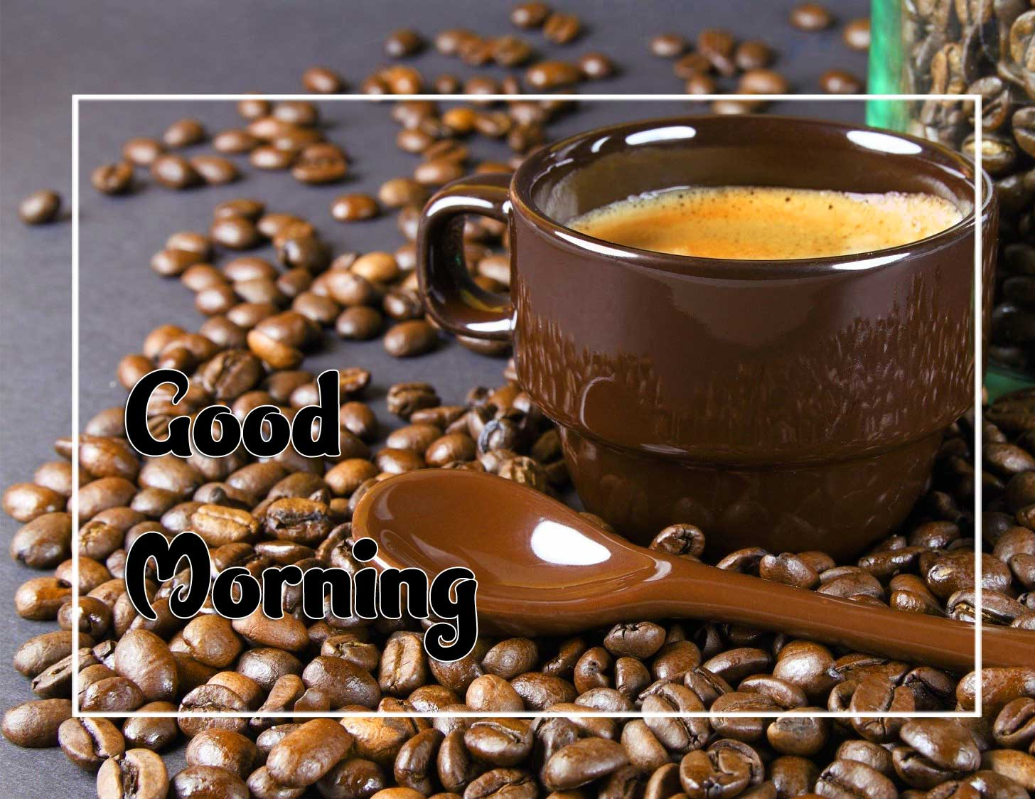 Beautiful Good Morning Download Pictures