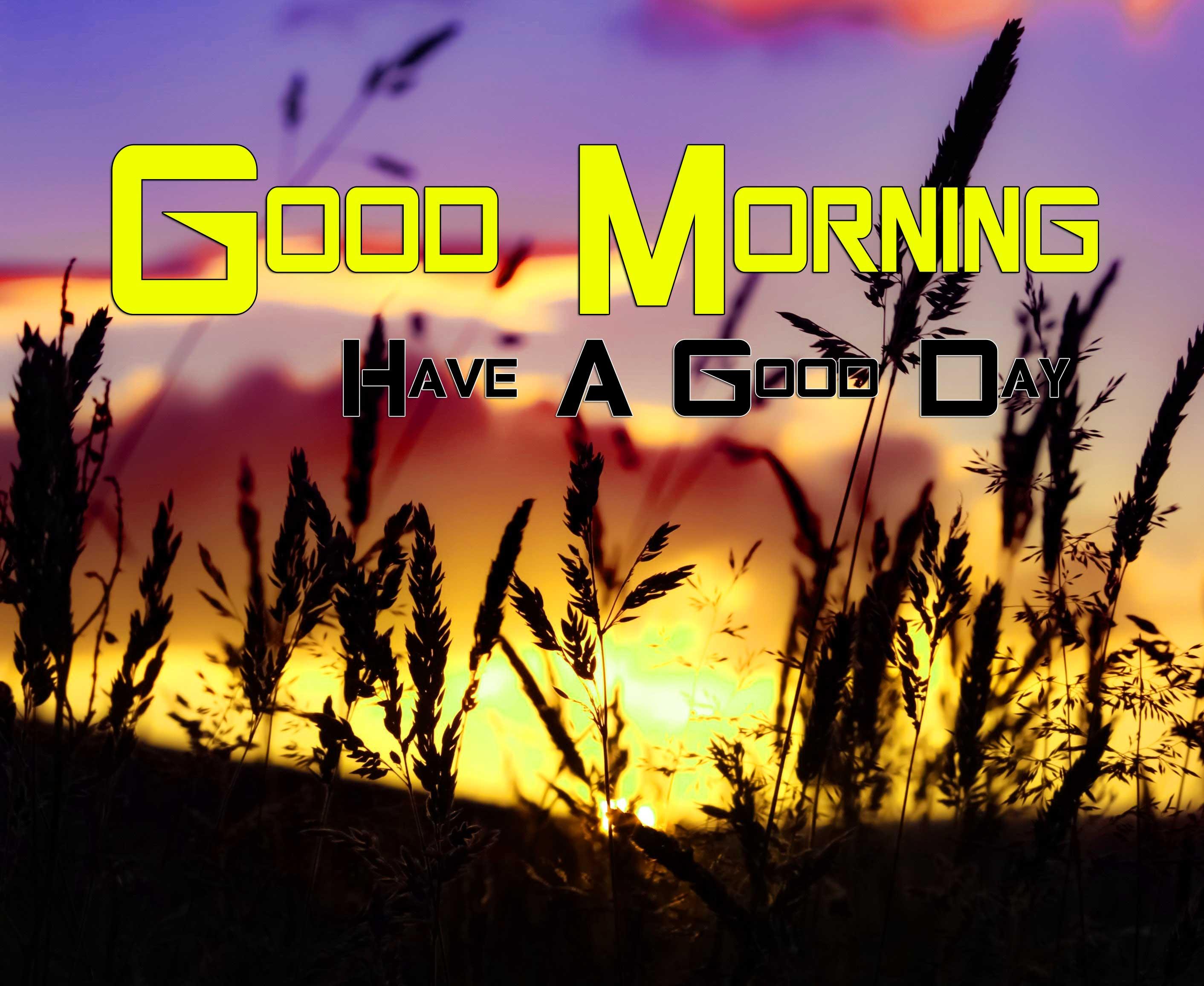 Beautiful Good Morning Images Hd Free