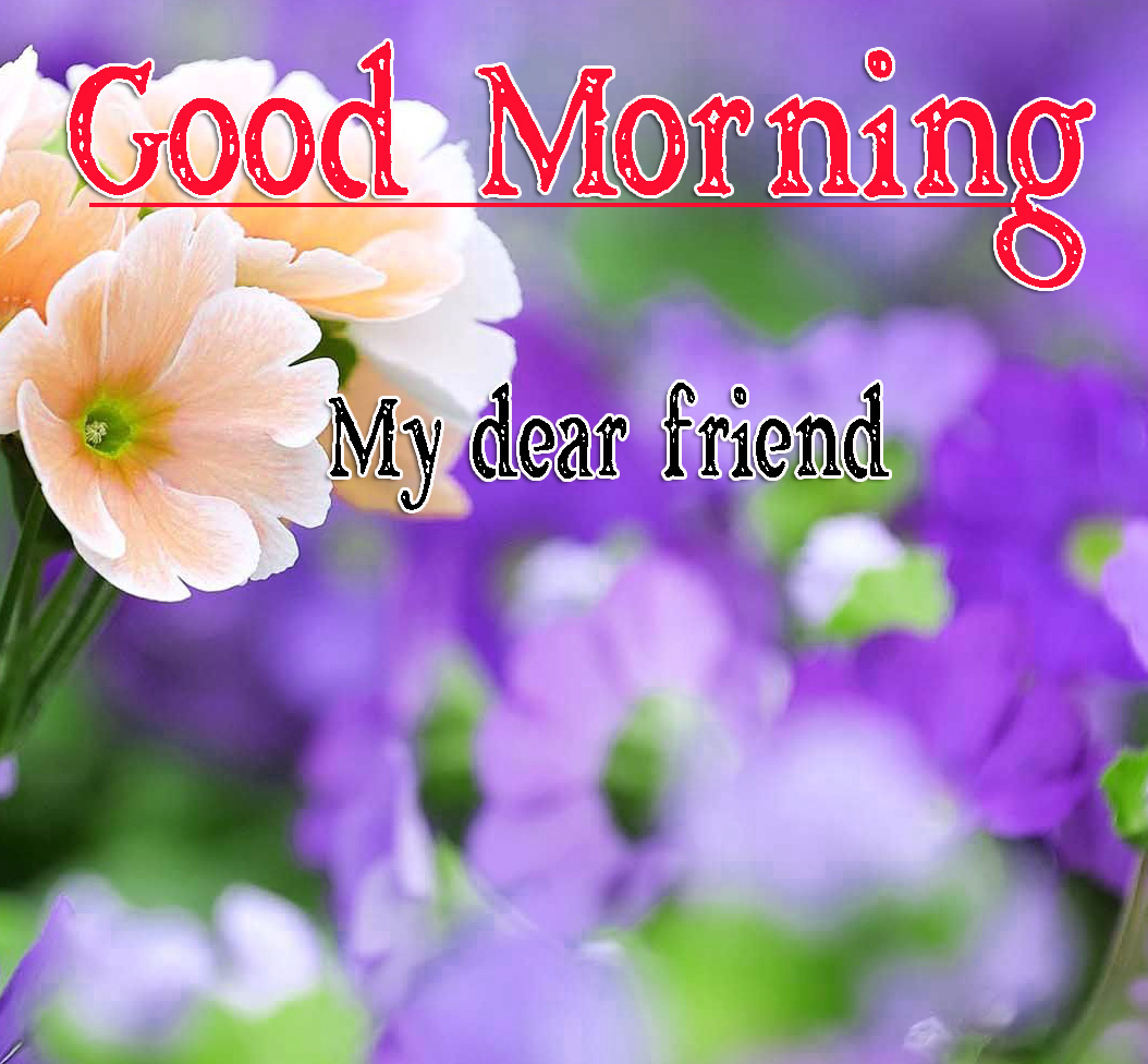 Best Friend Good Morning Images 71