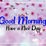 Flower Good morning Images 29