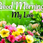Flower Good morning Images 30