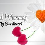 Flower Good morning Images 40