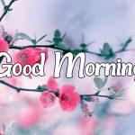 Flower Good morning Images 45