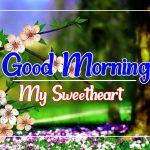Flower Good morning Images 51