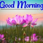 Flower Good morning Images 65