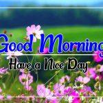 Flower Good morning Images 70