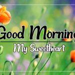 Flower Good morning Images 72