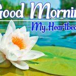 Flower Good morning Images 87