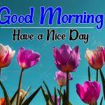 Flower Good morning Images 90