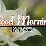 Flower Good morning Images 98