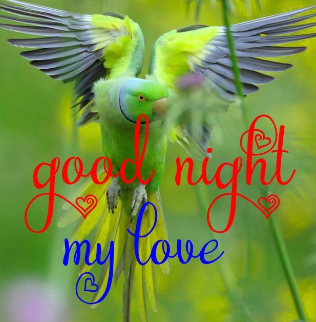 Free good night Images 101