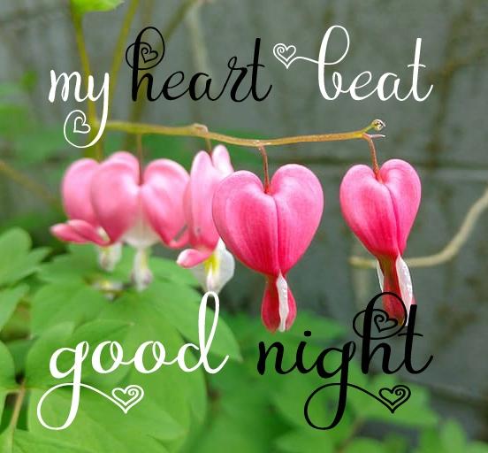 Free good night Images 102