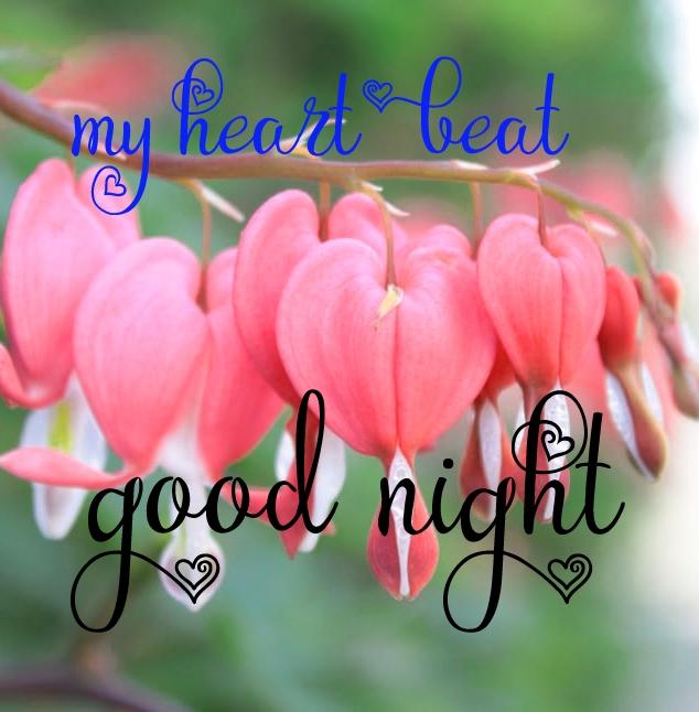 Free good night Images 104