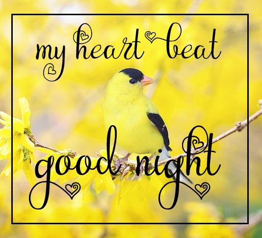 Free good night Images 111