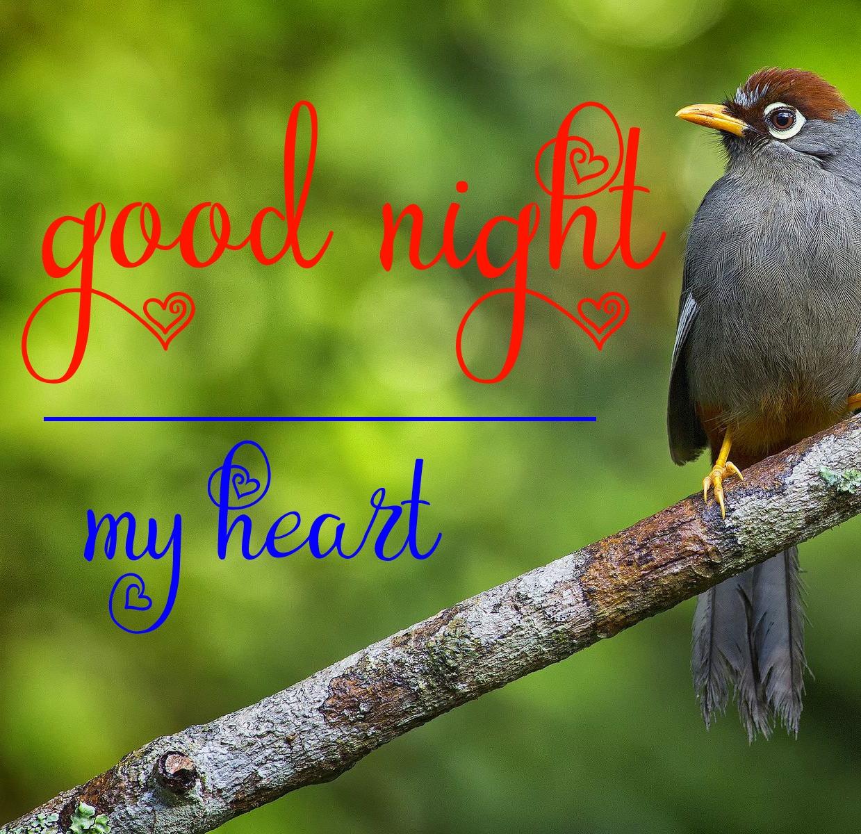 Free good night Images 23