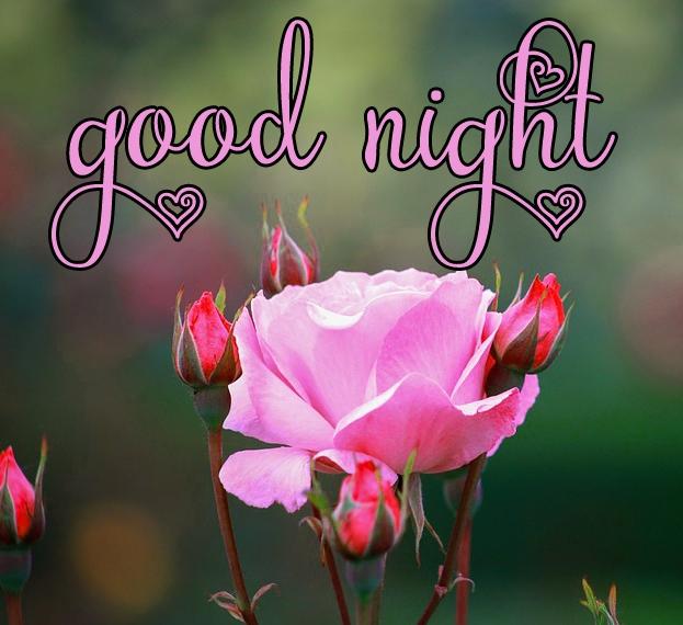 Free good night Images 38