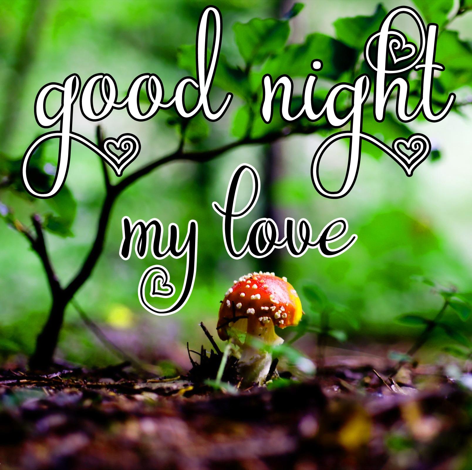 Free good night Images 51