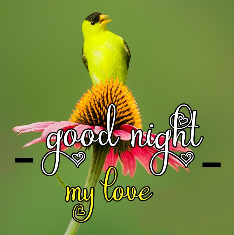 Free good night Images 58