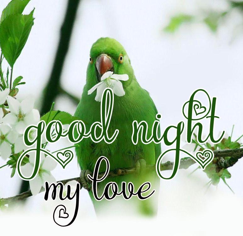 Free good night Images 60